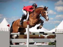 Equestrian © catwalkphotos / Fotolia.com